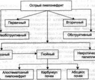 Симптомы и лечение острого пиелонефрита