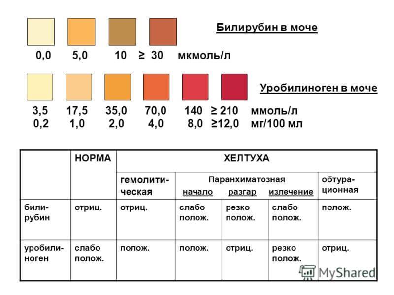 Отклонения и показатели нормы