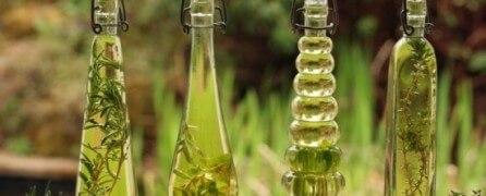 Травяные настойки помогут очистить почки
