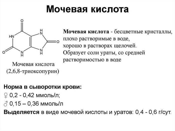 Нормальное содержание мочевой кислоты в организме человека