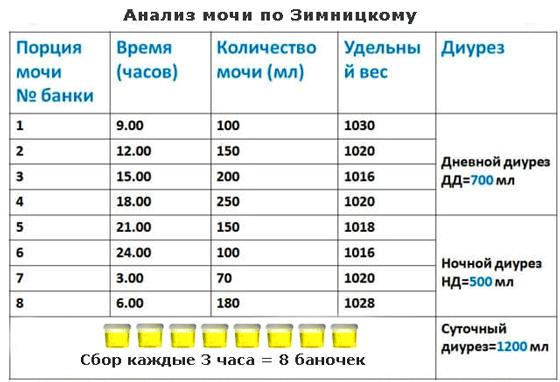 Сбор анализа по методике Зимницкого